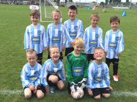 Hessle Rangers FC under 7s - Sponsored by Hird